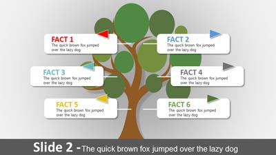 Tree Growth PowerPoint Slide
