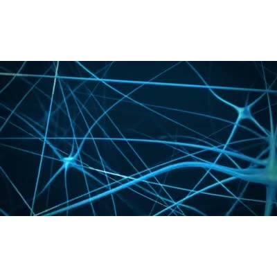 ID# 6131 - Brain Neurons - Video Background
