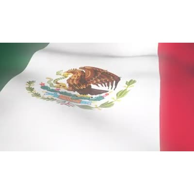 ID# 6312 - Mexico Flag Wave - Video Background