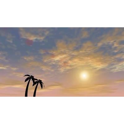 ID# 9891 - Tropical Sunset - Video Background