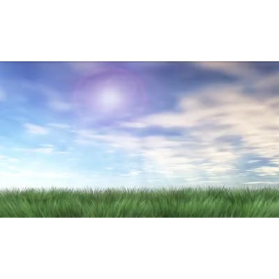 ID# 14291 - Meadow Clouds - Video Background